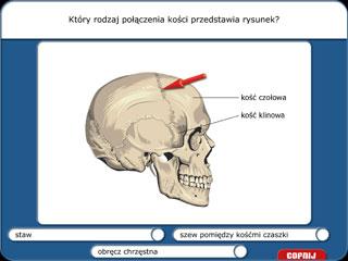 Biologia 1 - Nauka o człowieku | 2