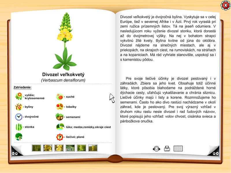 Vševedkova botanická záhrada | 1